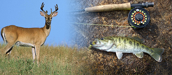 An image of a white tail deer and a fishing rod next to an Altamaha bass as examples of native Georgia wildlife.